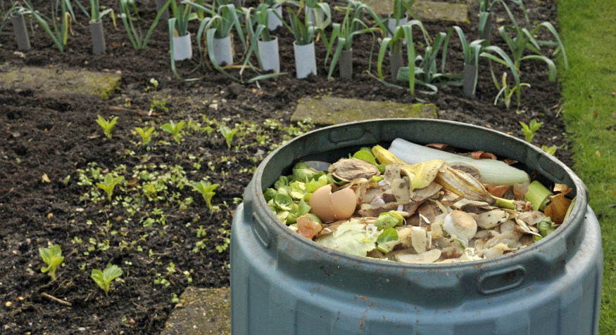 A simple guide to creating your own compost